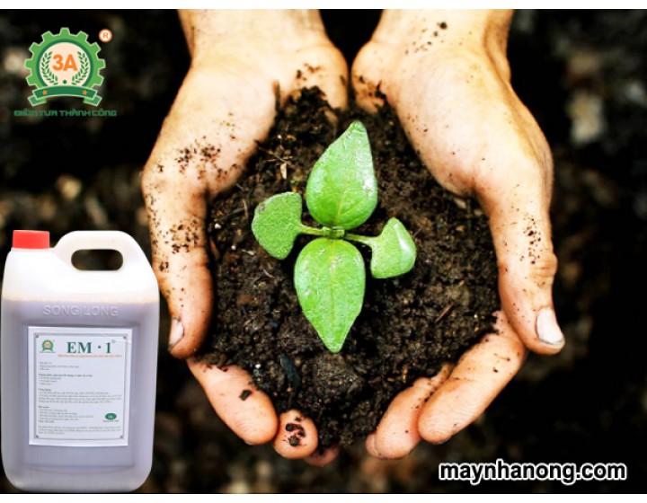 Tự làm đất sạch hữu cơ
