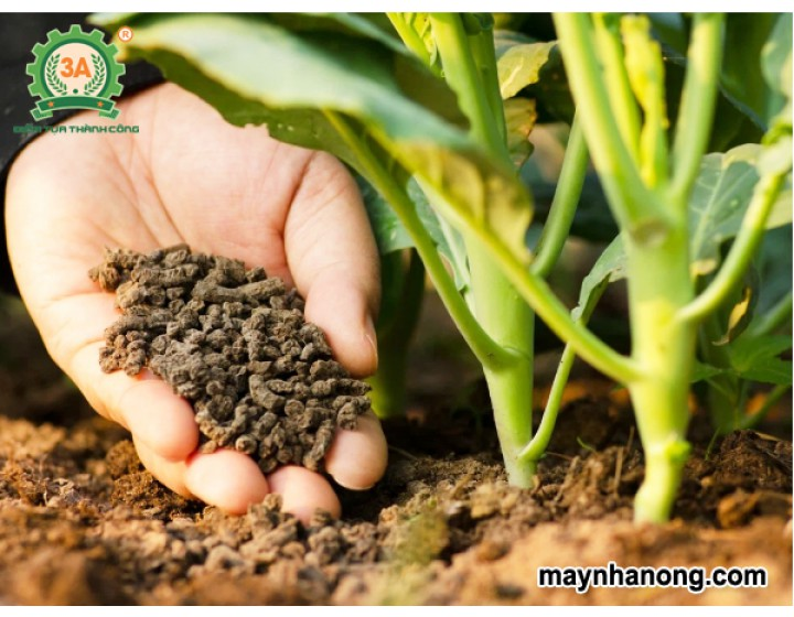 Sản xuất phân bón từ phụ phẩm nông nghiệp