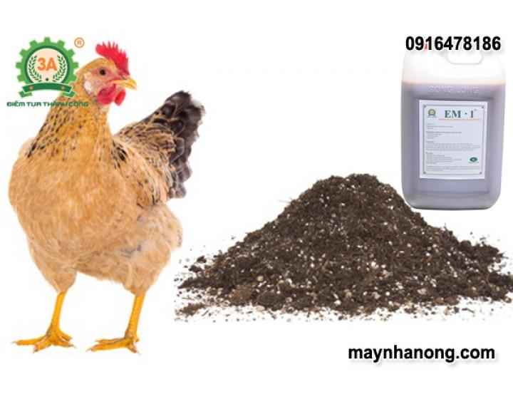Quy trình sản xuất phân gà lên men