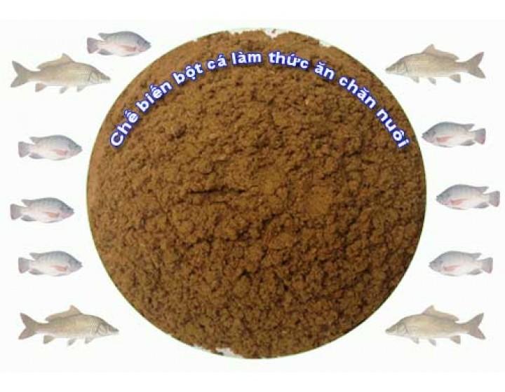 Chế biến bột cá làm thức ăn chăn nuôi
