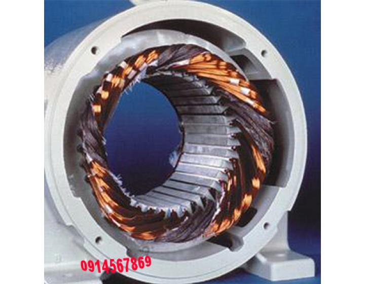 Xác định nguyên nhân làm hỏng động cơ điện 3Fa