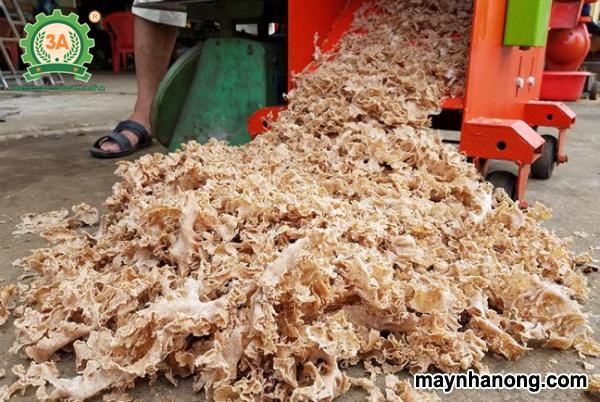 Bí quyết ủ bánh dầu bằng Trichoderma