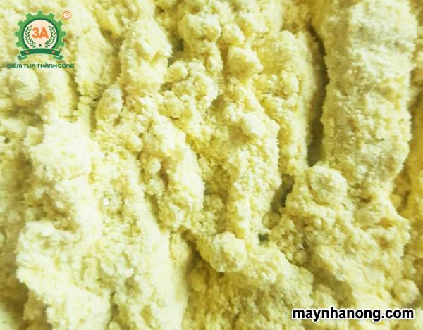 Cách ủ cám ngô cho gà bằng men ủ vi sinh btv