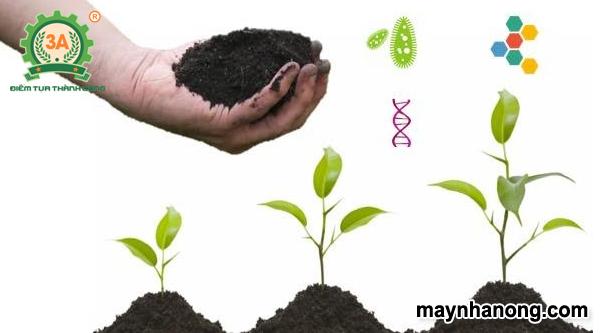 Kỹ thuật làm phân hữu cơ vi sinh