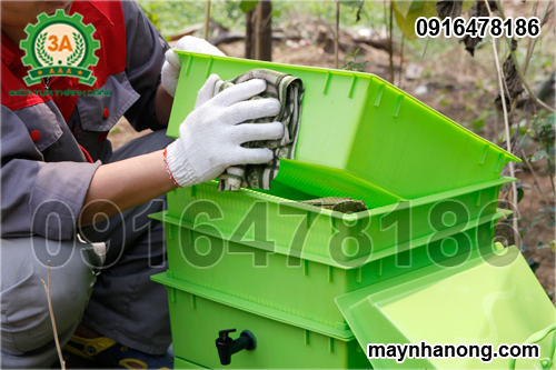 vệ sinh khay nuôi giun trùn quế