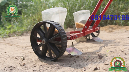 cách trồng đậu tương