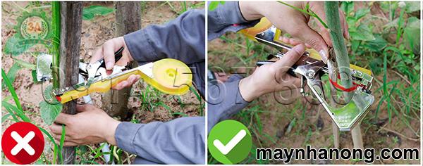 lưu ý khi sử dụng dụng cụ buộc cành cây